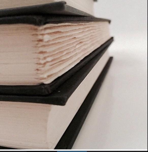 """""""Plum Books"""" (photo by Victoria Tomeo)"""